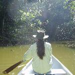 Canoeing through the forested lagoon