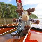 Take a Noosa Dream Boat Ride