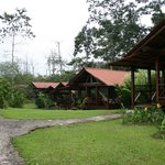 Foto de La Anita Rainforest Ranch