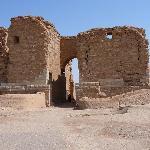 Porta palmirena 1