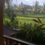A different view from Honeymoon Suite