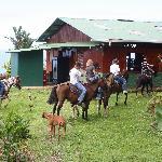 Horseback tours to beaches and the Santo Cristo Falls