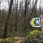Walking in Llanbedr...