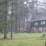 The hotel is set in a forest 5 km from Hoenderloo centre