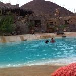 Mocha swimming in the pool