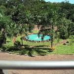 vista desde el balcon lado selva