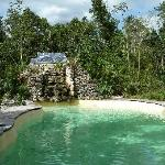 The Jolie Jungle Pool