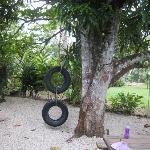 The tire swing, which was very popular with the children.