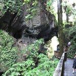Mangapohue Natural Bridge Walk