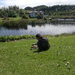Walking Taharoa Lake