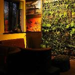 green wall in Explorer Club