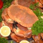 Start Bay cock crab