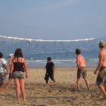 Beach volleyball - daily fun
