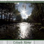 Photo of Camp Cobark