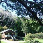 Crabbes Creek Cottages