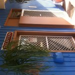 Photo of Coolabah Motel Walgett NSW