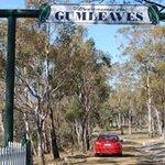 Gumleaves Bush Holidays