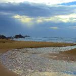 Adjoining Diggers Beach