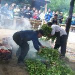 Se cubren las piedras calientes, con hojas de Nalca o Maqui