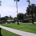 Peninsula garden, sea side