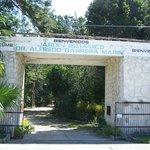 Jardin Botanico Dr. Alfredo Barrera Marin Photo