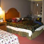 Double Full Size Beds