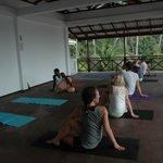 Morning yoga class