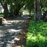 Pathway through Centenary Place
