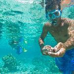 Snorkelling sur le motu