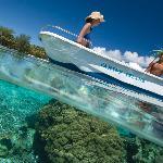 Snorkelling avec la Pirogue
