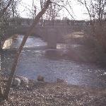 Adjacent Creek