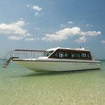 Layana 2 - Transfer Boat