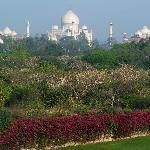 Telephoto shot of Taj from balcony
