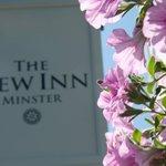 The New Inn ~ Minster