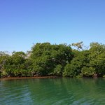 Where we caught the bait on a neighboring Caye