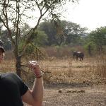 Walking with elephants in Nsumbu National Park