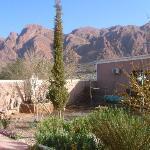 hotel l'Arganier - le jardin