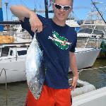 Wavy back tuna