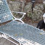 Dirty Deckhouse lounge chairs