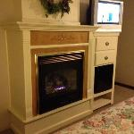 Fireplace, fridge and TV/DVD