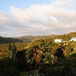 vista desde la terraza 3