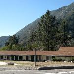 Mt Baldy - Mt Baldy Lodge Motel