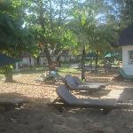 shady spot near the beach