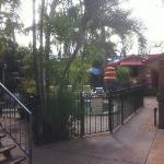 Lush Tropical Courtyard