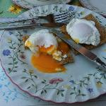 Poached Eggs - amazing!!