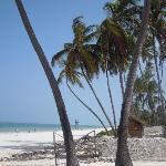 la spiaggia bianchissima