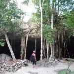 Ingresso Cenote Dos Ojos