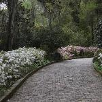 Alfred B. Maclay State Gardens