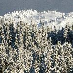 There's always fresh snow at Mt Seymour