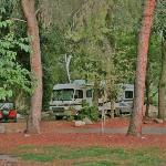 Nice secluded camping sites
